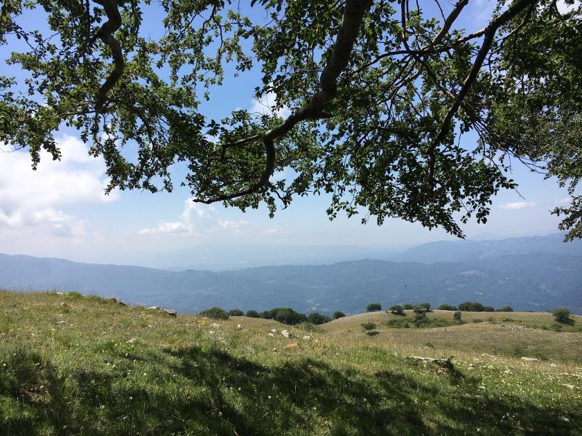 Panorama in località Campaegli