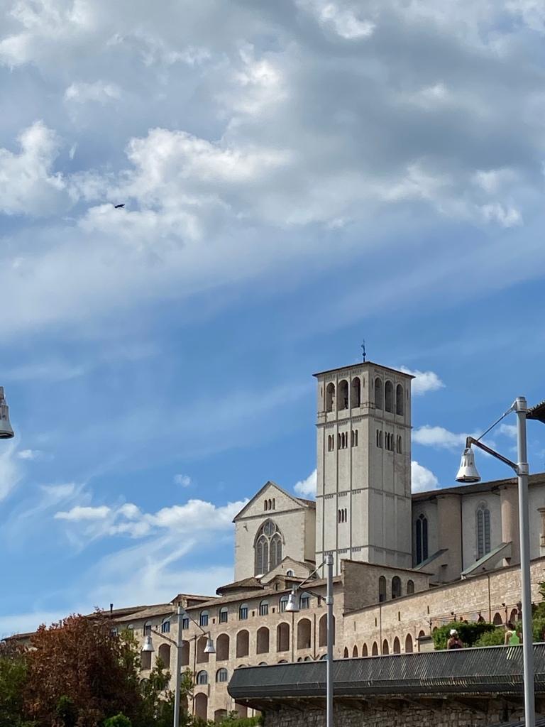 Basilica San Francesco d'Assisi particolare